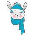 a cartoon hare covered in its warm blue winter vector image vector image