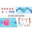 flat in vitro fertilization elements set vector image