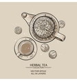 flowering tea vector image