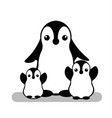 isolated penguin logo animal icon cartoon vector image