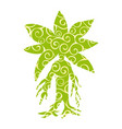 mandragora plant pattern silhouette ancient vector image vector image