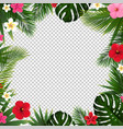 palm leaf and flowers isolated transparent vector image