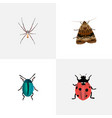 realistic ladybird spider bug and other vector image