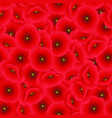 red corn poppy seamless background vector image vector image