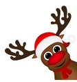 Reindeer peeking sideways on a white vector image vector image