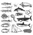 sea fish and animal isolated icons vector image