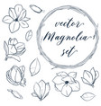 set isolated magnolia cute hand drawn vector image vector image
