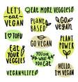 set vegan lettering vector image vector image