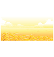Wheat Field and landscape vector image