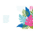 banner with jungle exotic leaves vector image