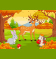cartoon wild animals in autumn forest vector image vector image