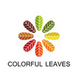 colorful leaves logo vector image vector image