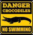 danger crocodiles no swimming sign vector image