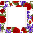 red rose and iris flower banner card vector image vector image