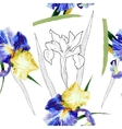 Seamless pattern with watercolor irises-05 vector image vector image