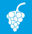 grape branch icon white vector image vector image