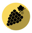 grapes sign flat black icon vector image vector image