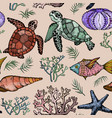 seamless pattern with ocean life organisms vector image vector image