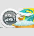 washing machine detergent iron laundry service vector image