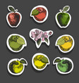 apple sketch stickersvintage ink hand drawn vector image vector image