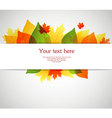 back autumn leafs vector image