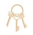 Bunch of three keys vector image vector image