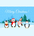 cute penguins in christmas vector image vector image