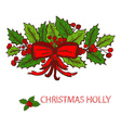hand drawn holly decor vector image vector image