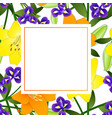 yellow orange lily and blue iris flower banner vector image vector image
