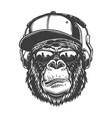 gorilla head in monochrome style vector image vector image