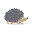 icon of gray hedgehog isolated forest woodland vector image vector image