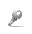Metal key vector image vector image