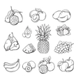 set of different hand drawn fruit vector image vector image