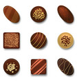 realistic 3d chocolate candies set vector image