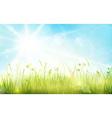 1701001 Green blue gras sky sun spring bokeh vector image vector image