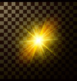 brilliant star shining design magical light vector image