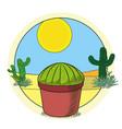 cactus in pot on desert vector image vector image