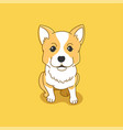 corgi puppy vector image vector image