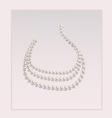 Elegant pearl necklace vector image