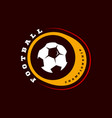 football or soccer modern professional sport vector image vector image