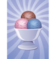 icecream in a bowl vector image vector image