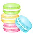 Stack of colorful macaron vector image vector image