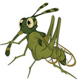 terrible mosquito vector image