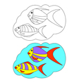 The picture for coloring Fish vector image vector image
