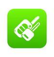 auto key icon green vector image