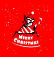 cat logo merry christmas vector image