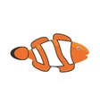 clown fish coral anemone reef vector image