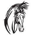 decorative portrait of arabian horse vector image vector image