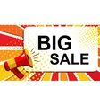 Megaphone with BIG SALE announcement Flat style vector image vector image