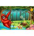 Orangutan in jungle vector image vector image